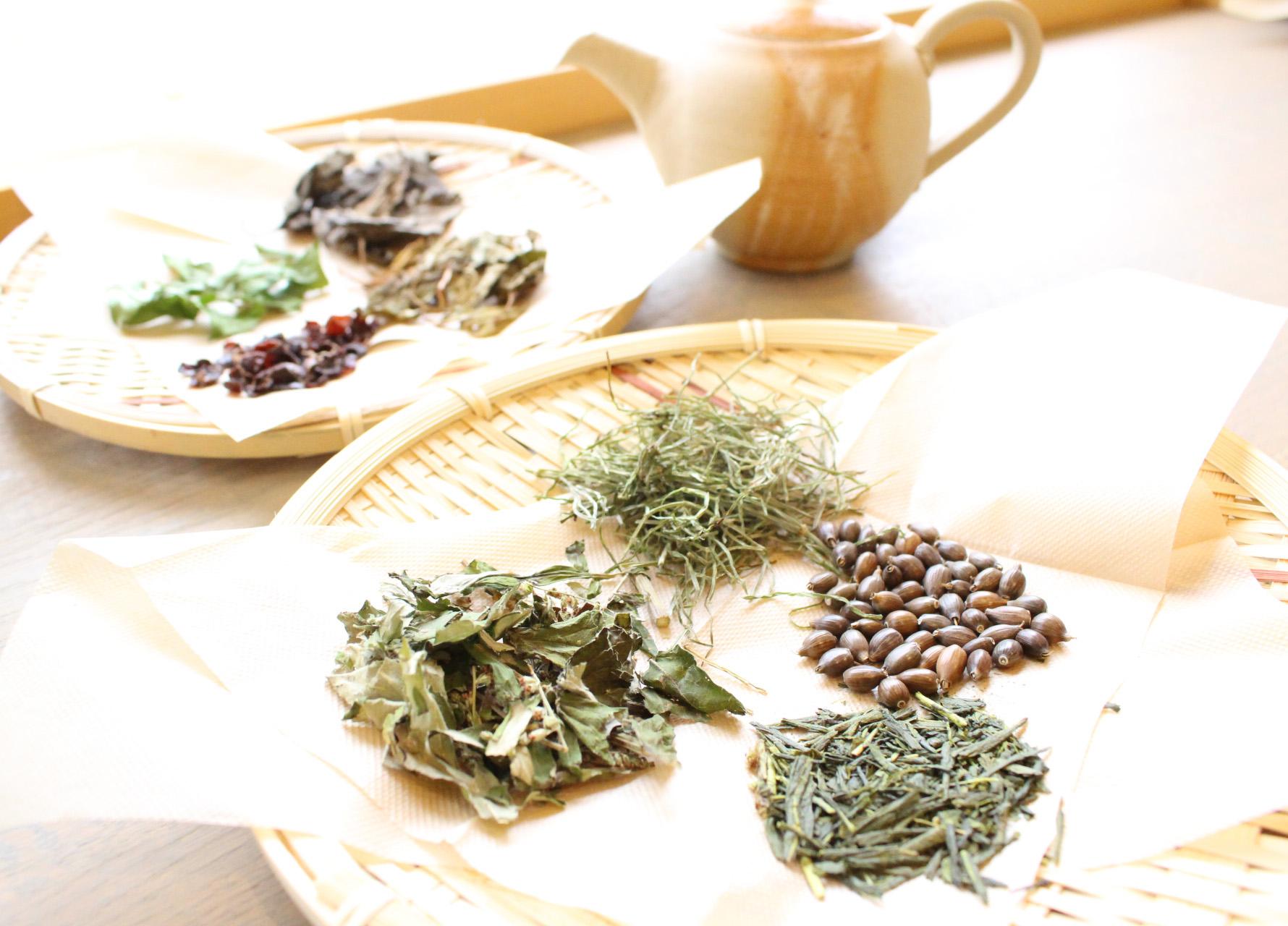 Herbal Village